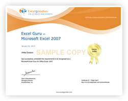 Excel Guru from Excelgoodies Consulting, Inc.