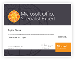 Microsoft Excel Expert from Microsoft, Inc.